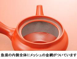 帯茶漉し急須 深むし茶