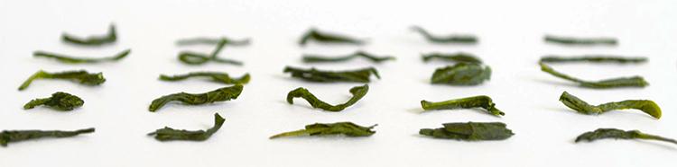 ぐり茶の葉のイメージ